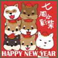 七個小彩柴賀新年