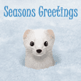 Winter wishes cards