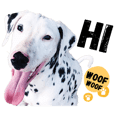 The Crazy Dog: Dalmatian Dotty