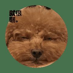AnnxDuffy_20181112223956
