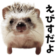 Sticker of Hedgehog YEBISU