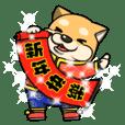 I'm super Shiba Inu 3