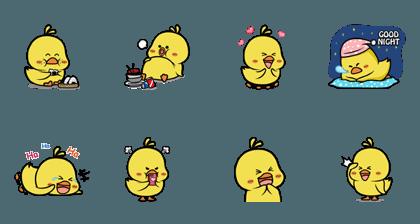Cute Litte Chicks