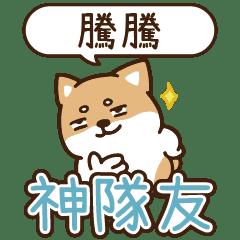 柴語錄 姓名_神隊友1791 騰騰