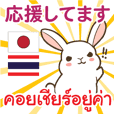 Rabbit Japan Thai Everyday use