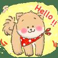 Mimi & Momo's Daily Life (Chinese)
