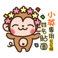 Twopebaby flower monkey 366