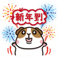 Guinea pig celebrate Pig's New Year!