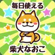 Petit Shiba Naoko (Everyday)