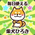 Petit Shiba Hiroki (Everyday)