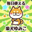 Petit Shiba Yumiko (Everyday)