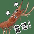 (動画)虾