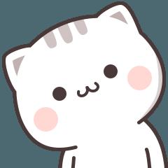 Cutie Cat-Chan One