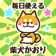 Petit Shiba Kaori (Everyday)