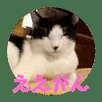 ほごっこ♡CAFE⑤  岡山弁バージョン