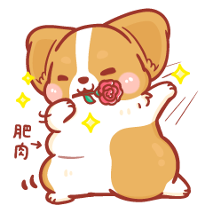 柯基犬卡卡- 甜蜜特輯 卡卡篇