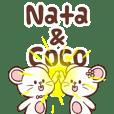 Nata & Coco