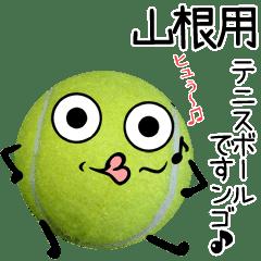 山根用♪テニスボールですンゴ