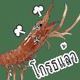 (Animation)Shrimp Thai