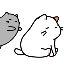 Chubby Cat Brothers
