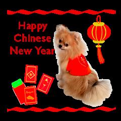 Zhi Ji Hong (Happy Chinese ...