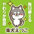 Petit Black Shiba Etsuko (Honorific)