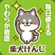 Petit Black Shiba Kenji (Honorific)