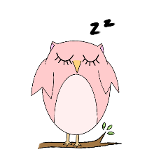 Poppo and Pippo Owl
