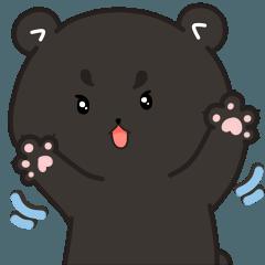 Calvin: The Black Bear