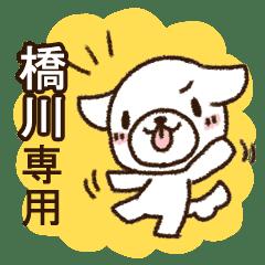 橋川専用・敬語のペロ犬