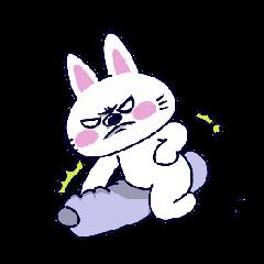 Whiibit the cute little bun...