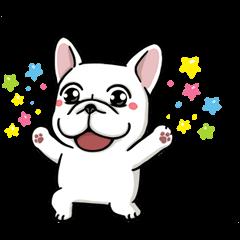 豆卡頻道 超活潑的狗