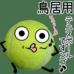 鳥居用♪テニスボールですンゴ