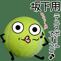 坂下用♪テニスボールですンゴ