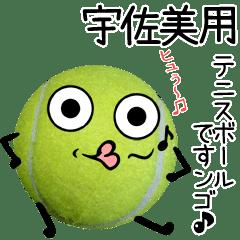 宇佐美用♪テニスボールですンゴ