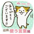 Cute cat 'Cyanpachi'. -Extra edition 8-