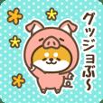 Petit Shiba (Joke Animal)
