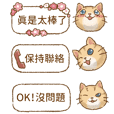 Cat's LifeStyle - Daily dialog