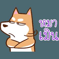Chayen Dog