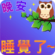 Naughty Owl 2