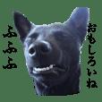 愛犬たびスタンプ