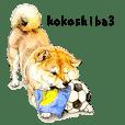 KOKOSHIBA3