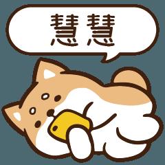 柴語錄 姓名1064 慧慧