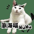 hair MuMu life-1