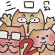 Funny three cute cats partII