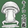 Mushroom books