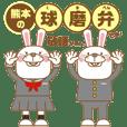Provincialism:KUMA Twin white rabbits