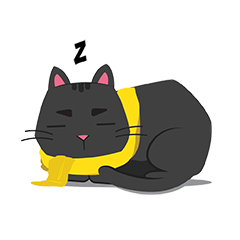 Bleki the cat