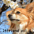My dogs&24friends vol.1