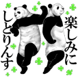 The unusual honorific of pandas